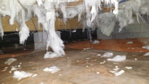 Crawl Space Solutions, crawl space encapsulation raleigh, crawl space encapsulation, crawl space dehumidifiers, sealed crawl space contractors, crawl space contractor, foundation vents, crawl space vents, sealed crawl space